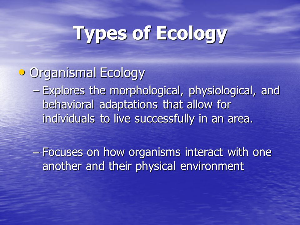 Types of Ecology Organismal Ecology Organismal Ecology –Explores the morphological, physiological, and behavioral adaptations that allow for individua
