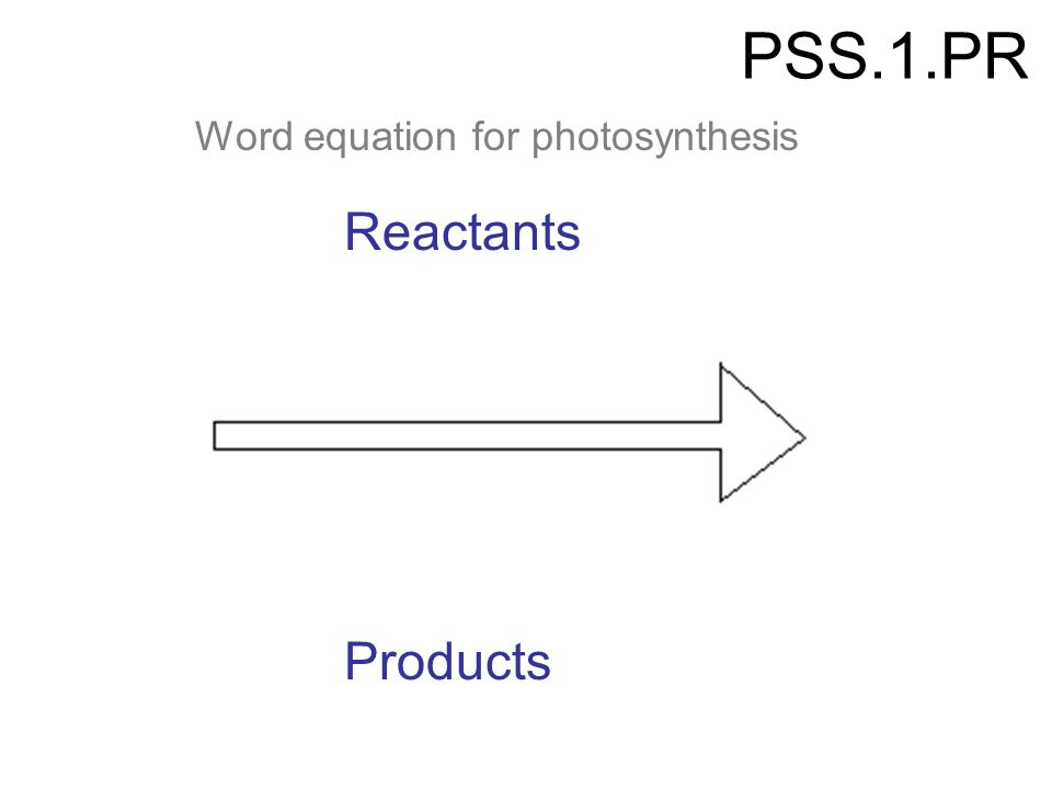 PSS.1.PR Reactants Word equation for photosynthesis Products