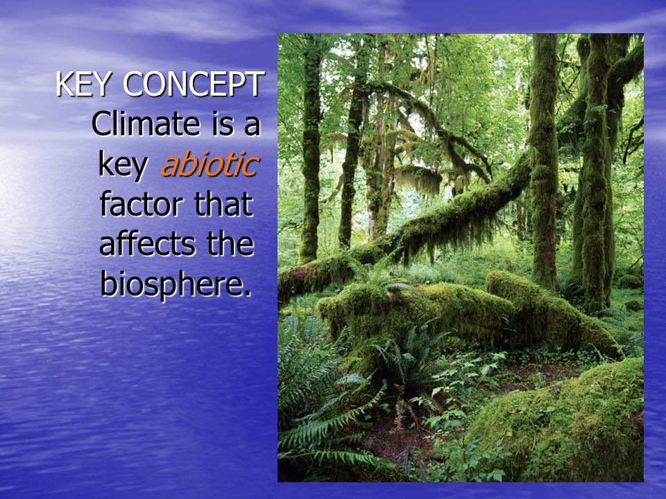 Earth's tilt on its axis plays a role in seasonal change.