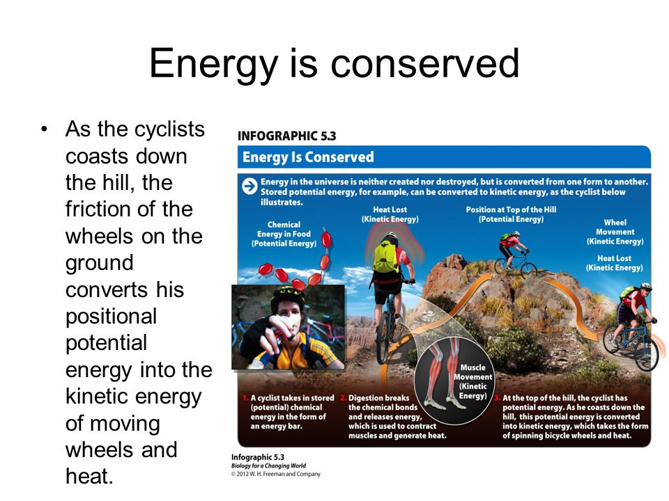 Energy is conserved As the cyclists coasts down the hill, the friction of the wheels on the ground converts his positional potential energy into the kinetic energy of moving wheels and heat.