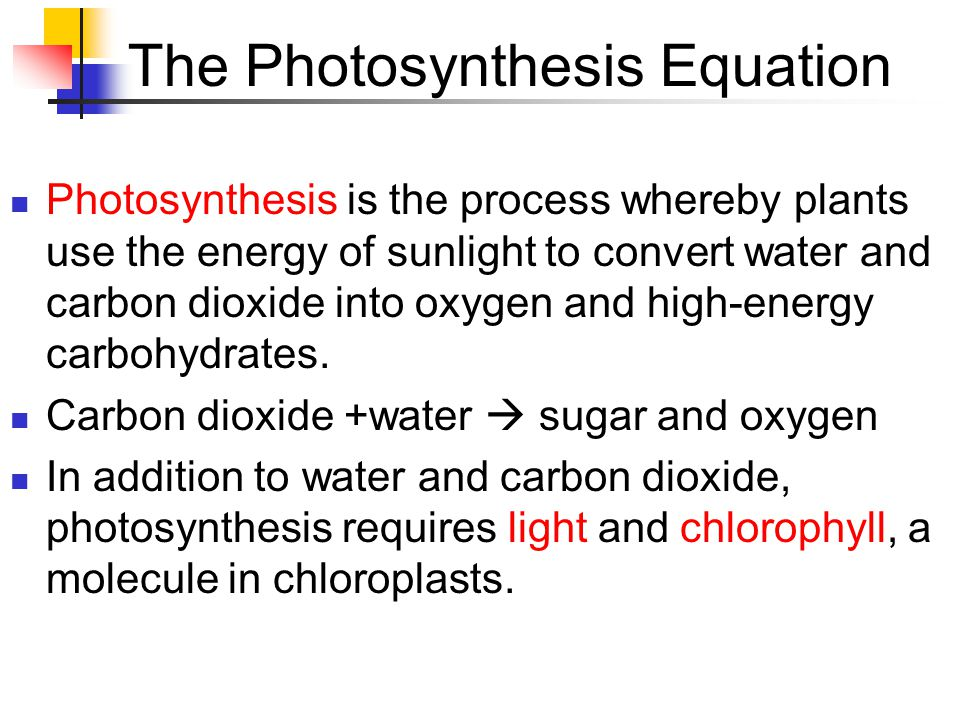 The Photosynthesis Equation Photosynthesis is the process whereby plants use the energy of sunlight to convert water and carbon dioxide into oxygen and high-energy carbohydrates.