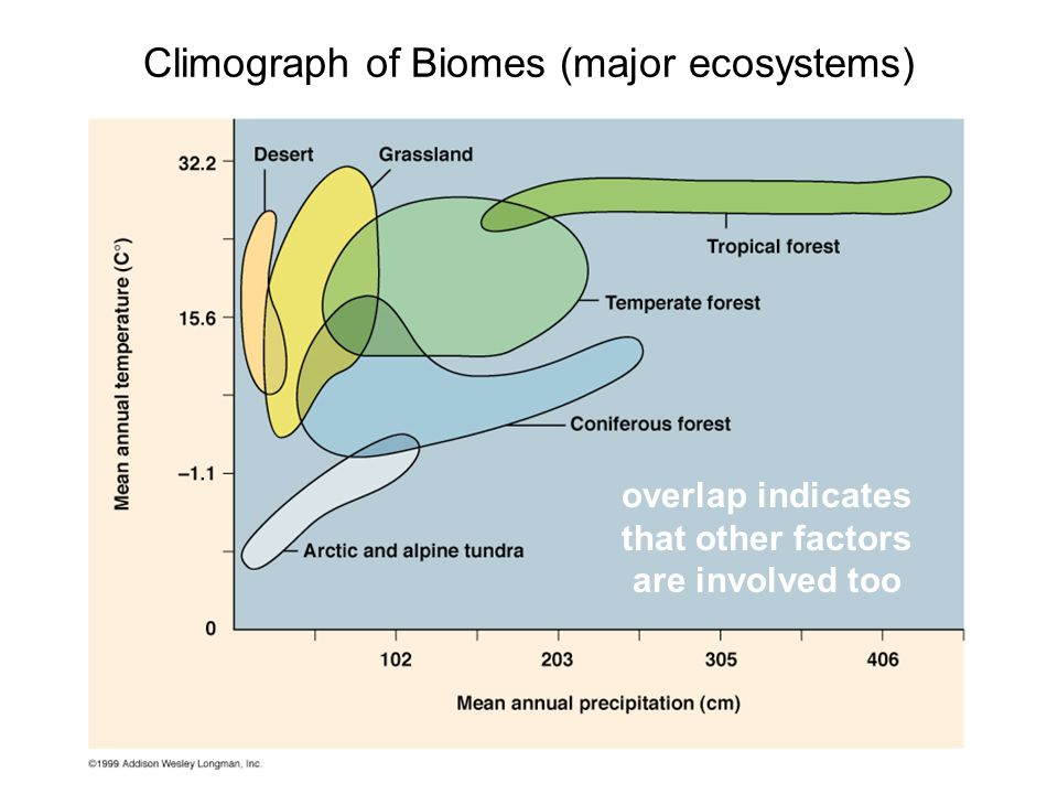 Climograph of Biomes (major ecosystems) overlap indicates that other factors are involved too