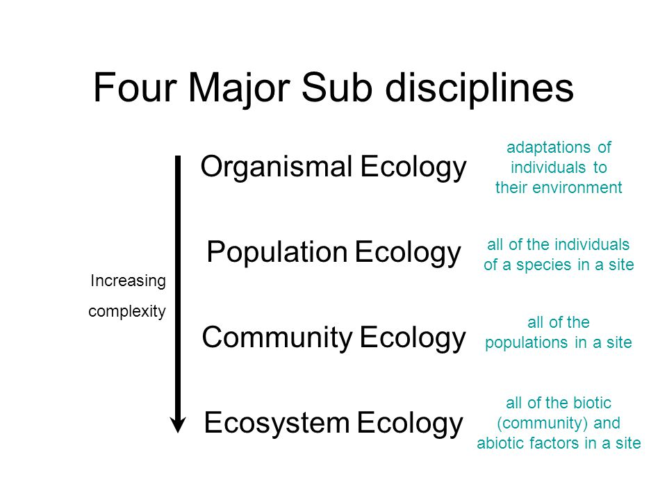 Four Major Sub disciplines Organismal Ecology Population Ecology Community Ecology Ecosystem Ecology Increasing complexity adaptations of individuals to their environment all of the individuals of a species in a site all of the populations in a site all of the biotic (community) and abiotic factors in a site