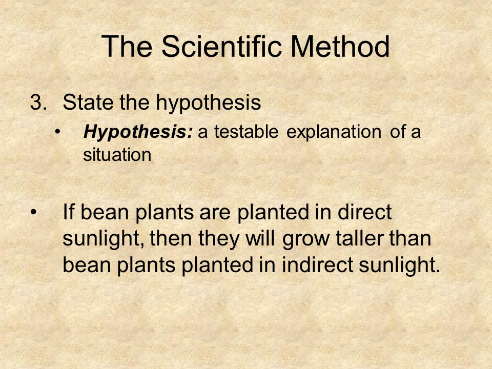 The Scientific Method 3.State the hypothesis Hypothesis: a testable explanation of a situation If bean plants are planted in direct sunlight, then the