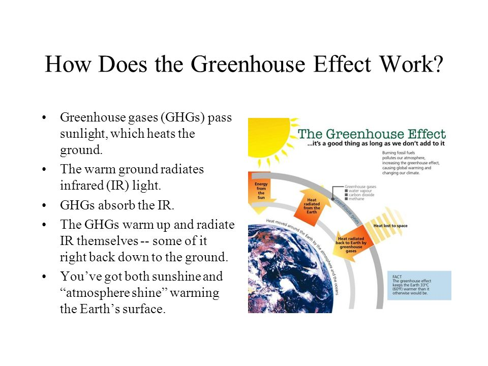 How Does the Greenhouse Effect Work. Greenhouse gases (GHGs) pass sunlight, which heats the ground.