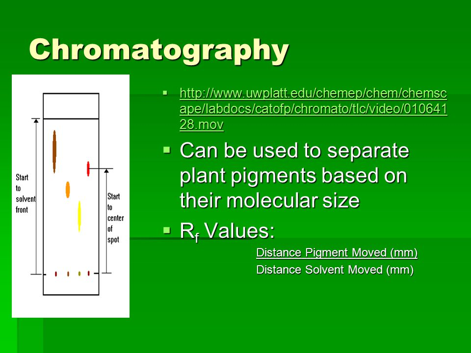 Chromatography  http://www.uwplatt.edu/chemep/chem/chemsc ape/labdocs/catofp/chromato/tlc/video/010641 28.mov http://www.uwplatt.edu/chemep/chem/chem