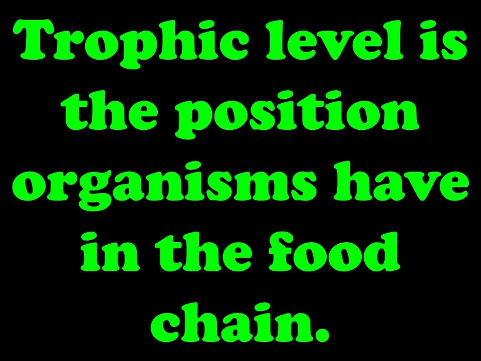 Trophic level is the position organisms have in the food chain.