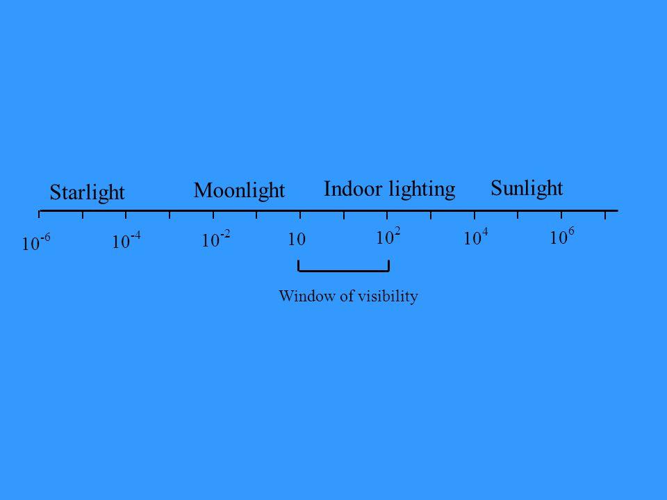 Starlight Moonlight 10 -6 10 -4 10 -2 10 10 2 10 4 10 6 Window of visibility Indoor lighting Sunlight