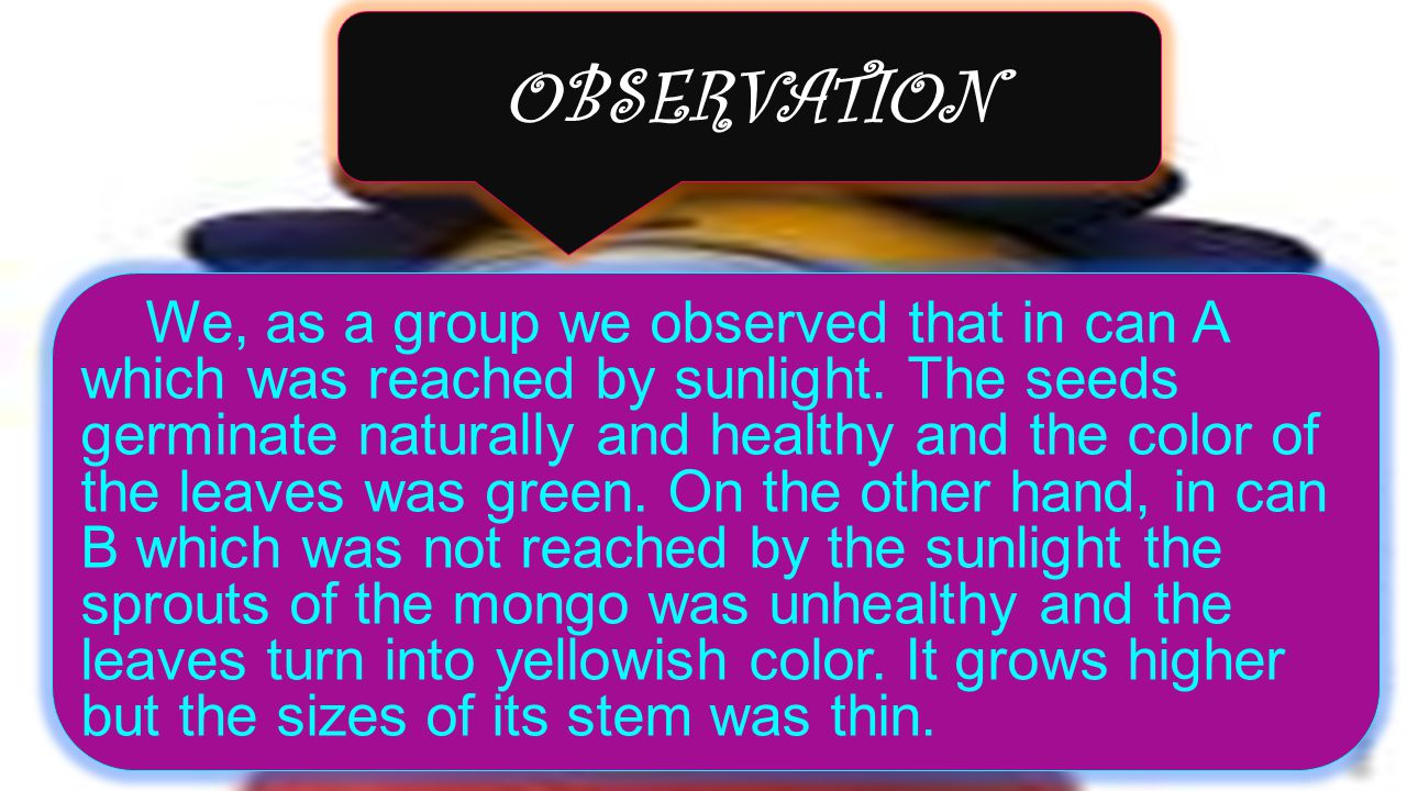 Observation: We, as a group we observed that in can A which was reached by sunlight.