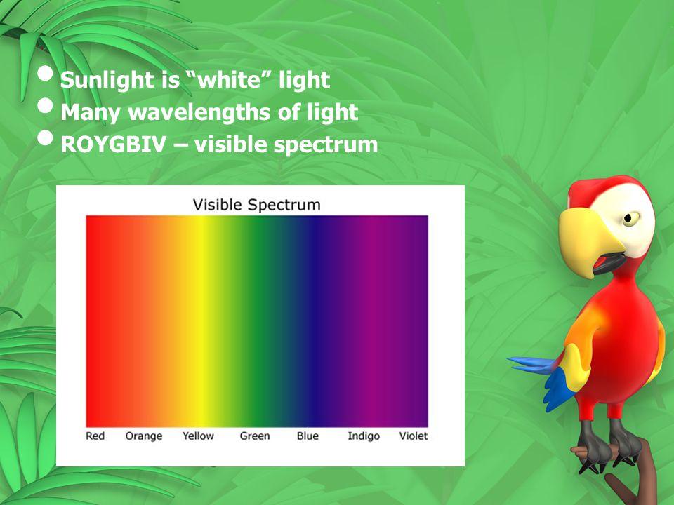 """Sunlight is """"white"""" light Many wavelengths of light ROYGBIV – visible spectrum"""