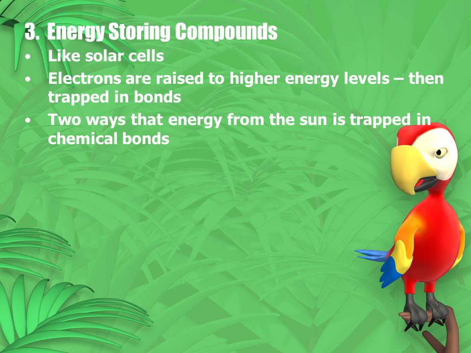 3. Energy Storing Compounds Like solar cells Electrons are raised to higher energy levels – then trapped in bonds Two ways that energy from the sun is