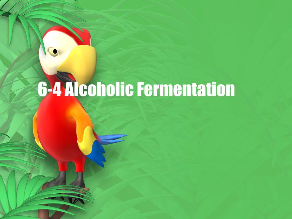 6-4 Alcoholic Fermentation