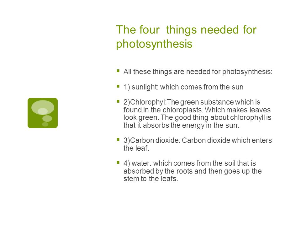 The four things needed for photosynthesis  All these things are needed for photosynthesis:  1) sunlight: which comes from the sun  2)Chlorophyl:The green substance which is found in the chloroplasts.