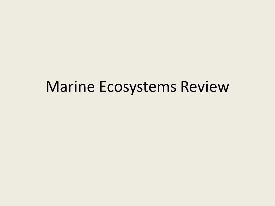 Marine Ecosystems Review
