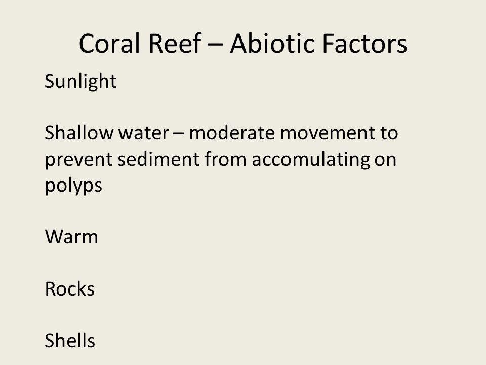 Coral Reef – Abiotic Factors Sunlight Shallow water – moderate movement to prevent sediment from accomulating on polyps Warm Rocks Shells