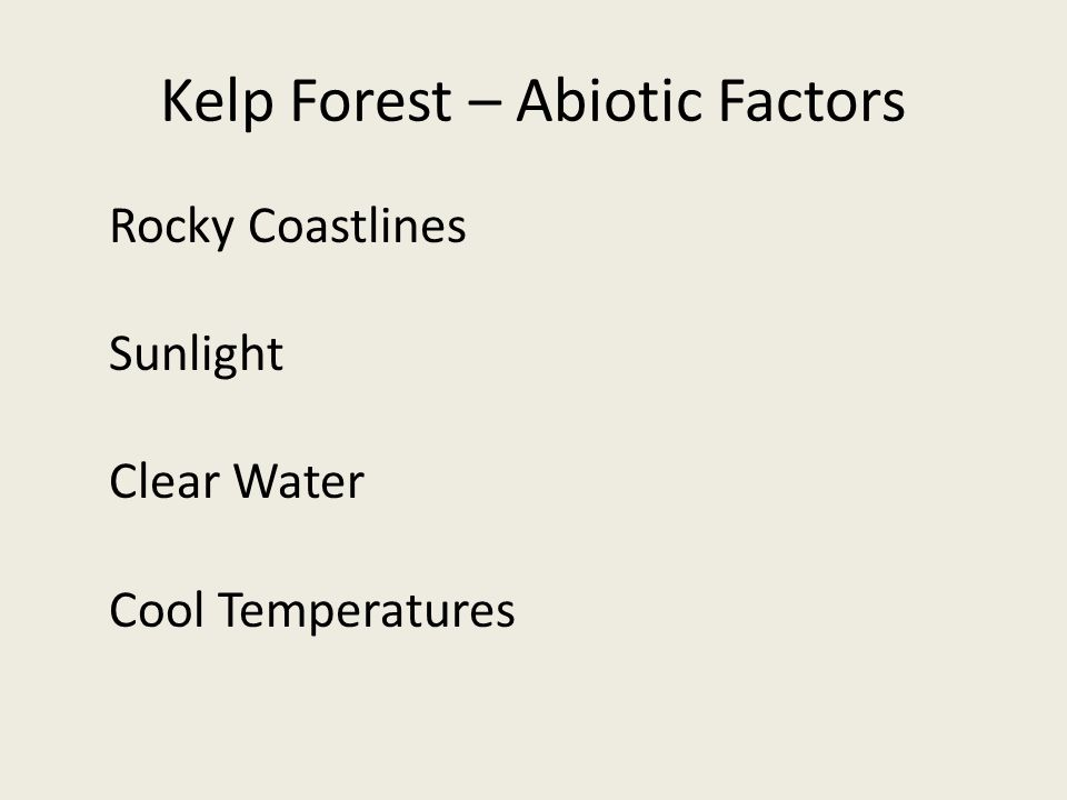 Kelp Forest – Abiotic Factors Rocky Coastlines Sunlight Clear Water Cool Temperatures