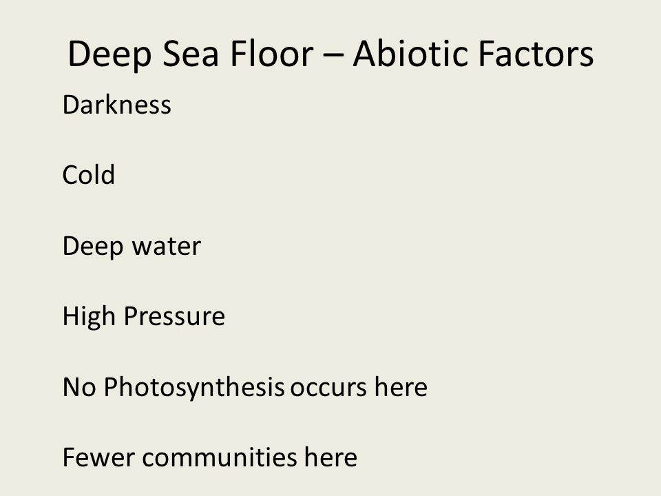 Deep Sea Floor – Abiotic Factors Darkness Cold Deep water High Pressure No Photosynthesis occurs here Fewer communities here