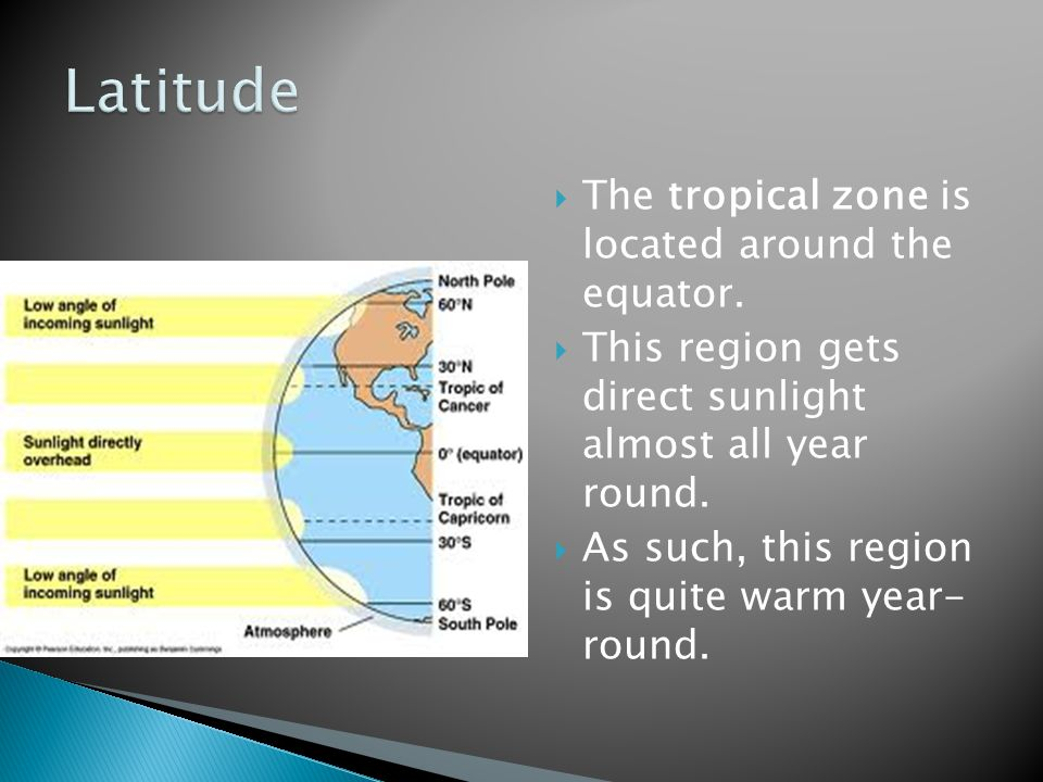  The tropical zone is located around the equator.  This region gets direct sunlight almost all year round.  As such, this region is quite warm year