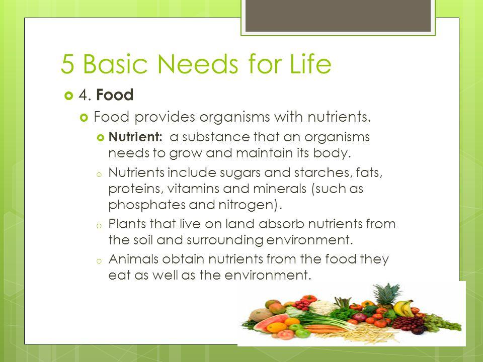 5 Basic Needs for Life  5.