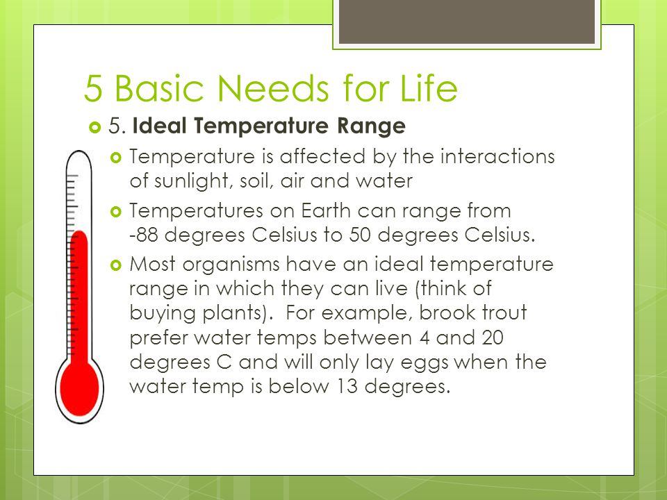 5 Basic Needs for Life  5. Ideal Temperature Range  Temperature is affected by the interactions of sunlight, soil, air and water  Temperatures on E