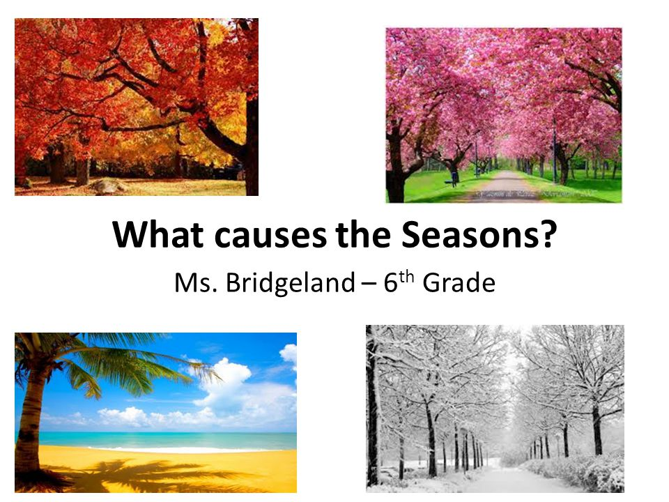 What causes the Seasons? Ms. Bridgeland – 6 th Grade