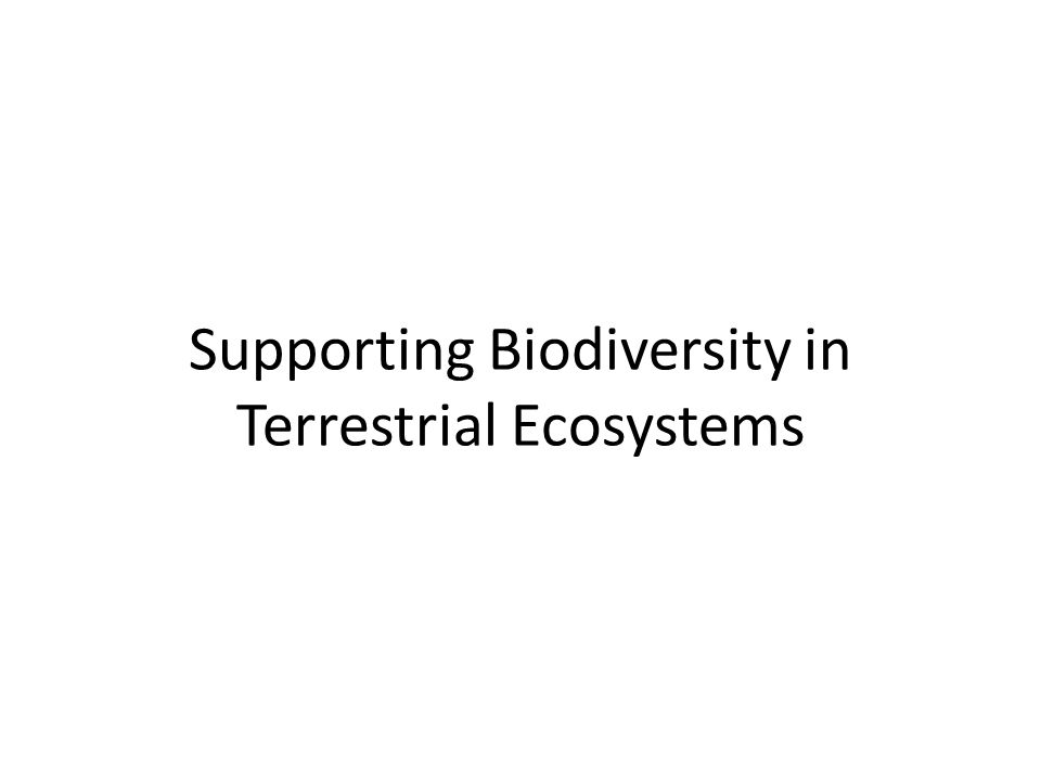 Supporting Biodiversity in Terrestrial Ecosystems
