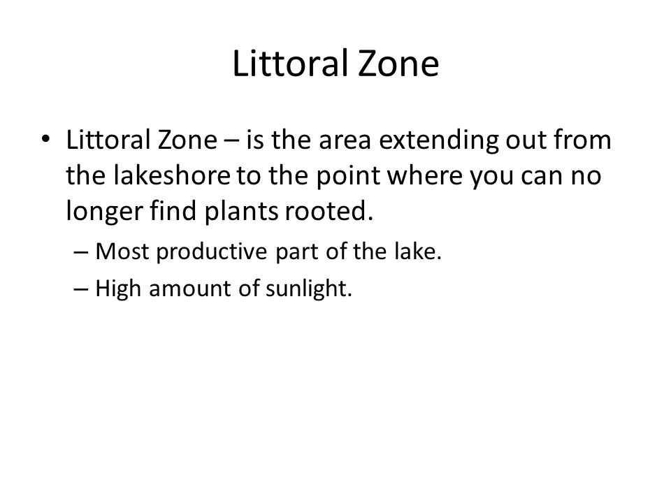 Littoral Zone Littoral Zone – is the area extending out from the lakeshore to the point where you can no longer find plants rooted. – Most productive