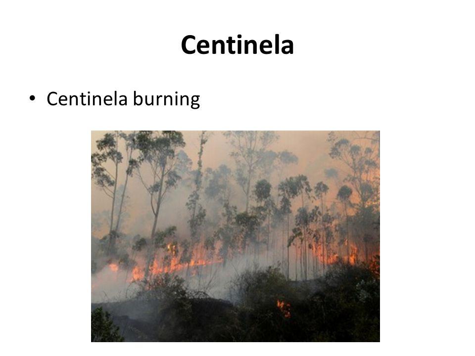 Centinela Centinela burning