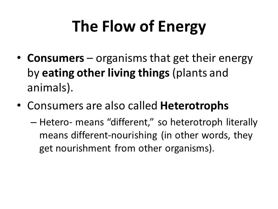 The Flow of Energy Consumers – organisms that get their energy by eating other living things (plants and animals). Consumers are also called Heterotro