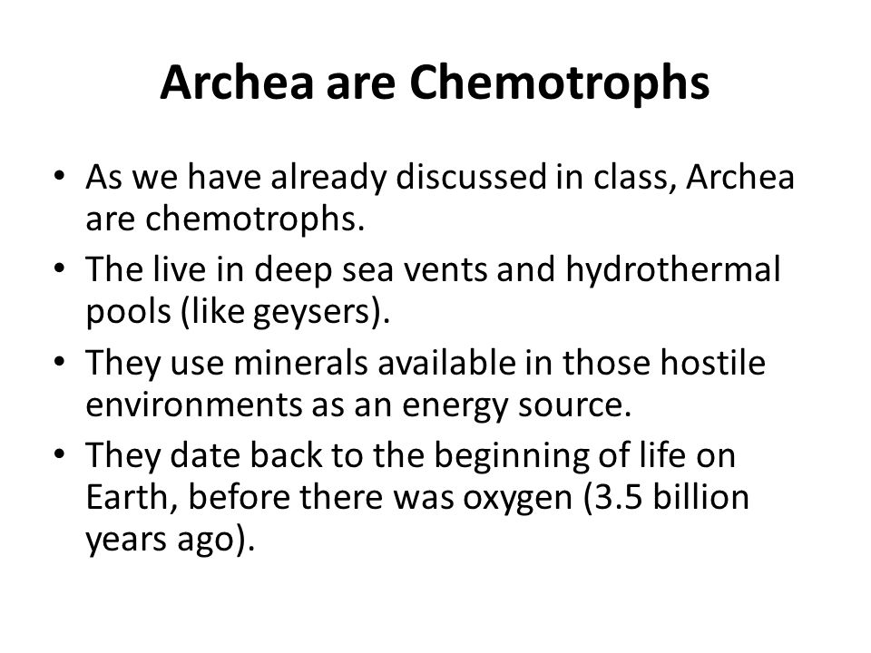 Archea are Chemotrophs As we have already discussed in class, Archea are chemotrophs. The live in deep sea vents and hydrothermal pools (like geysers)