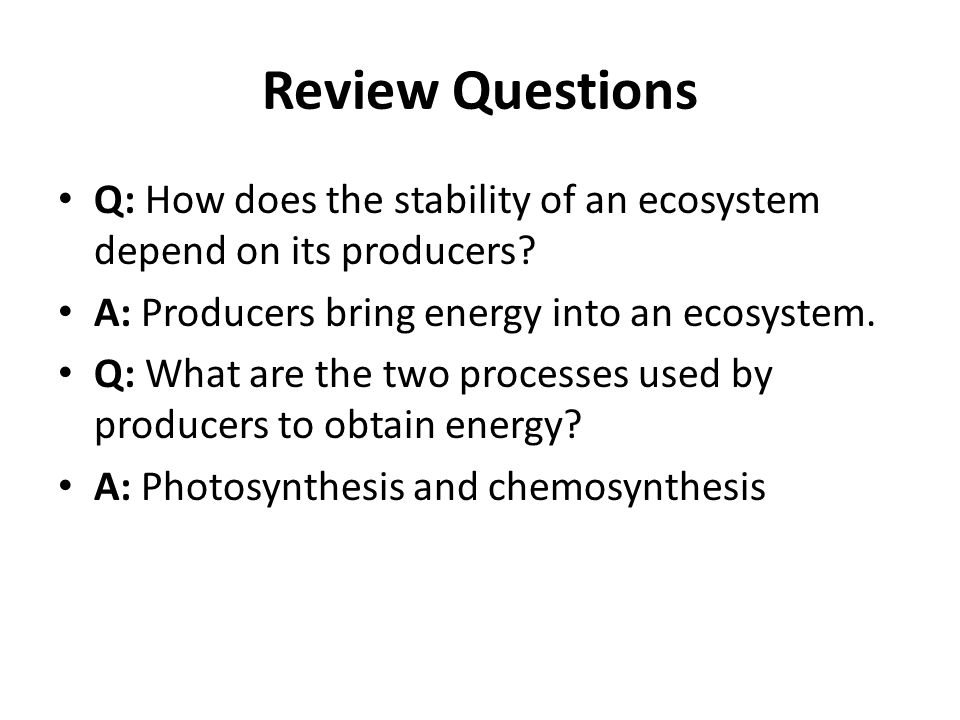 Review Questions Q: How does the stability of an ecosystem depend on its producers? A: Producers bring energy into an ecosystem. Q: What are the two p