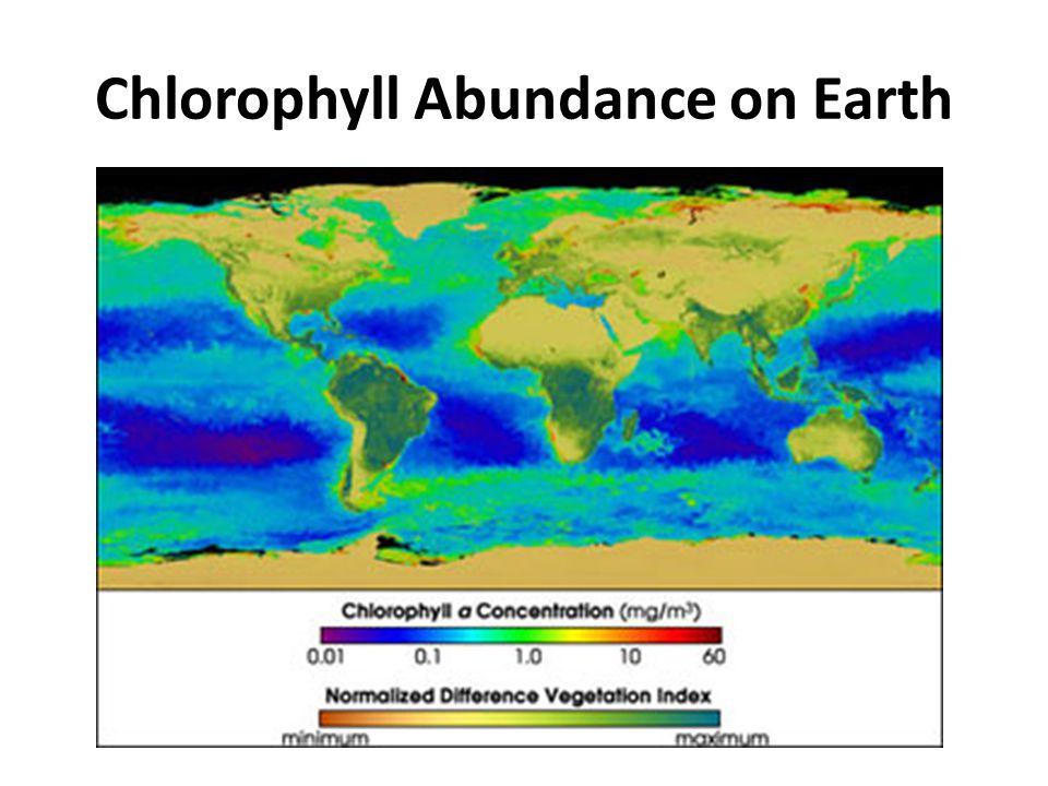 Chlorophyll Abundance on Earth