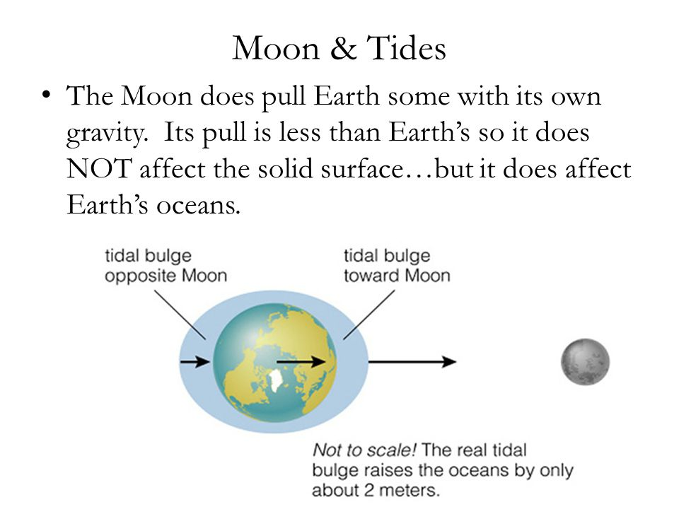 Moon & Tides The Moon does pull Earth some with its own gravity.