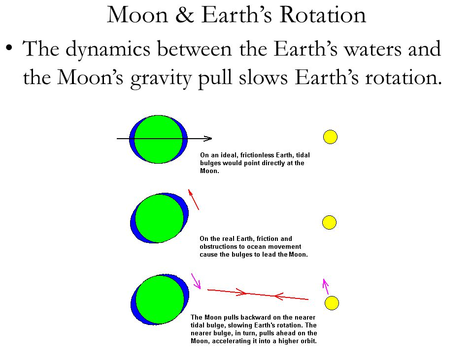 Moon & Earth's Rotation The dynamics between the Earth's waters and the Moon's gravity pull slows Earth's rotation.