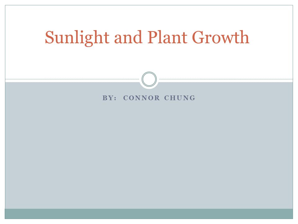 BY: CONNOR CHUNG Sunlight and Plant Growth