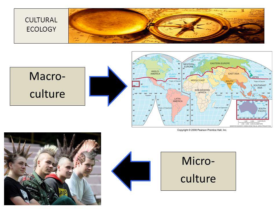 Macro- culture Micro- culture CULTURAL ECOLOGY