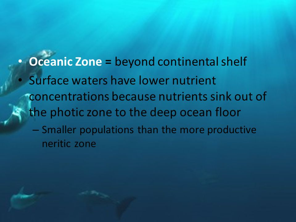 Oceanic Zone = beyond continental shelf Surface waters have lower nutrient concentrations because nutrients sink out of the photic zone to the deep ocean floor – Smaller populations than the more productive neritic zone