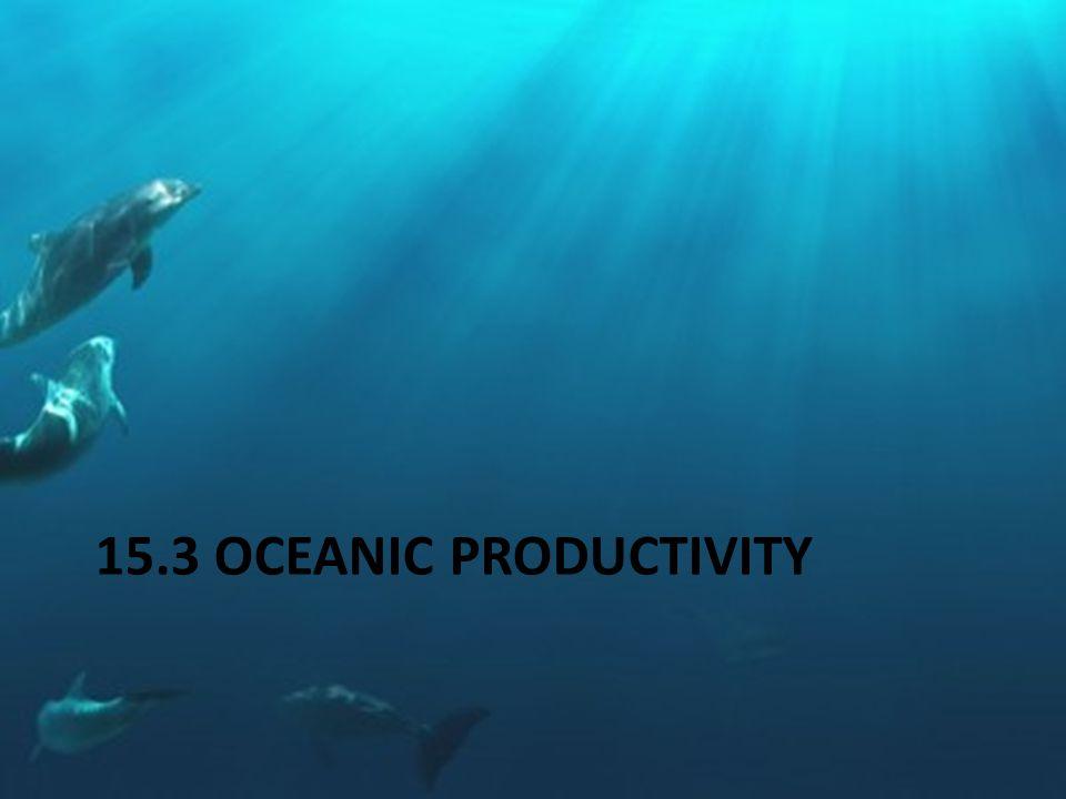 15.3 OCEANIC PRODUCTIVITY