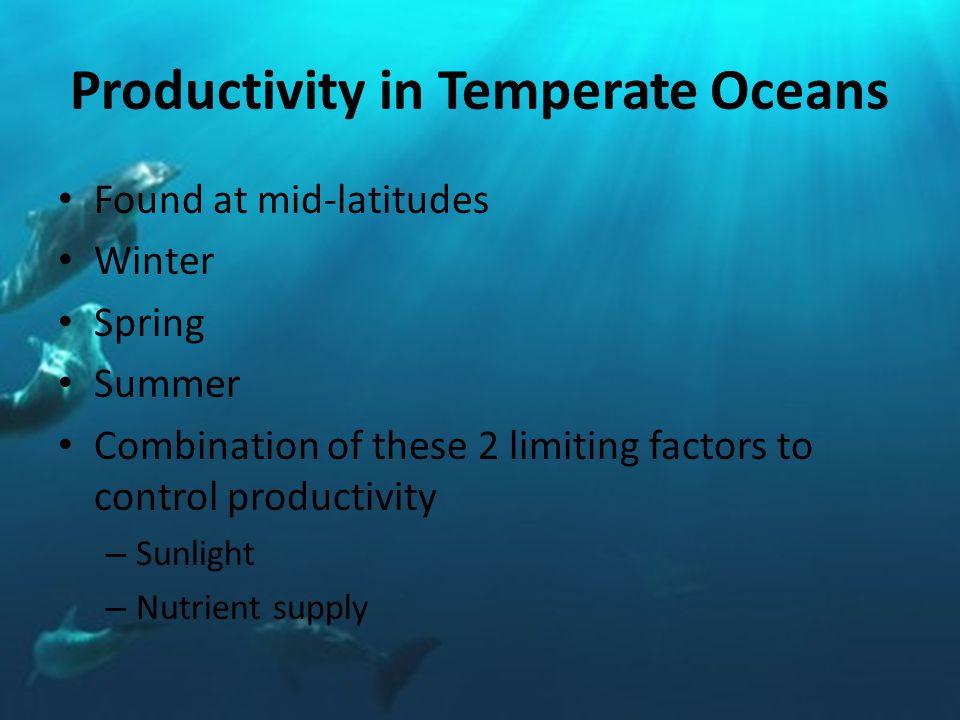 Productivity in Temperate Oceans Found at mid-latitudes Winter Spring Summer Combination of these 2 limiting factors to control productivity – Sunlight – Nutrient supply