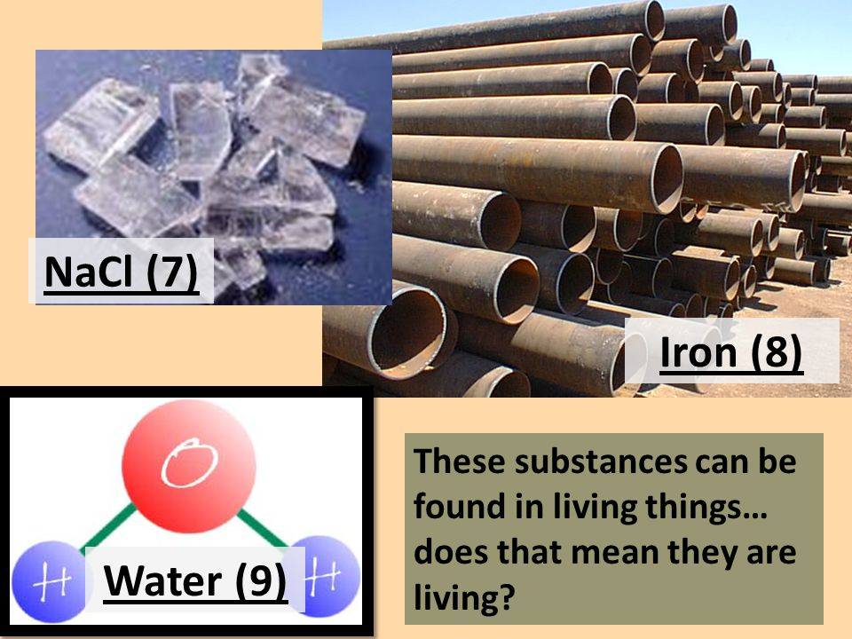 These substances can be found in living things… does that mean they are living.