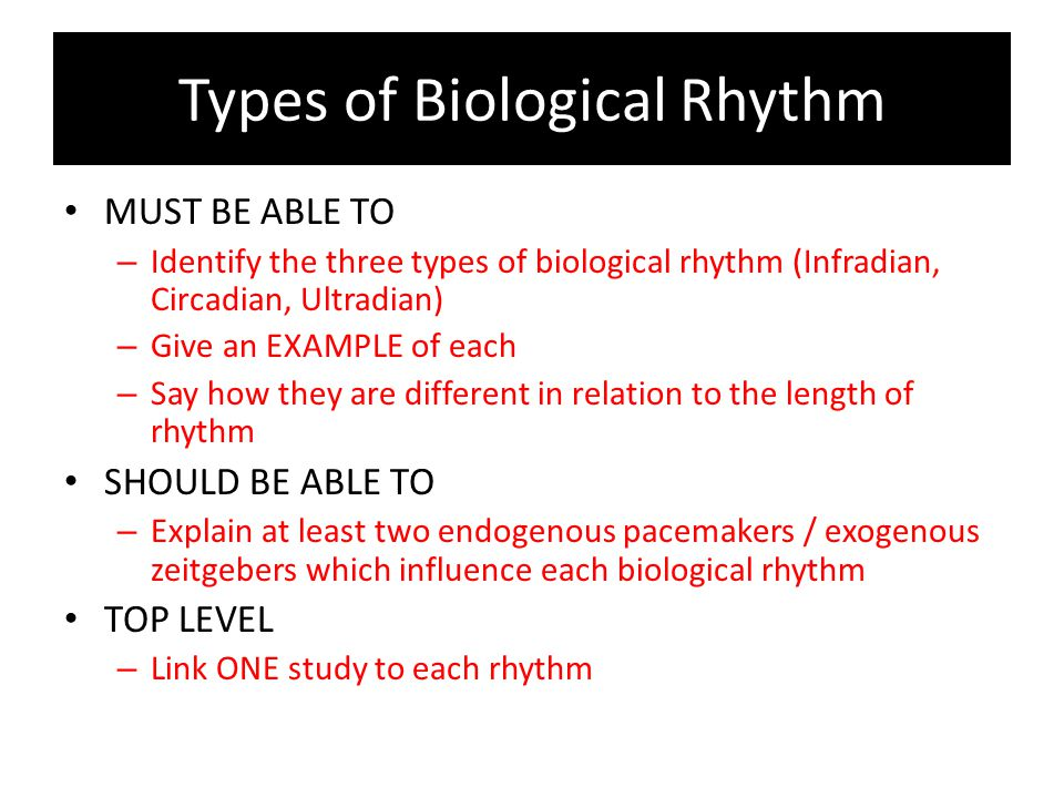 Types of Bio Rhythm ULTRADIAN – Cycles of activity which last less than 24hours (i.e.