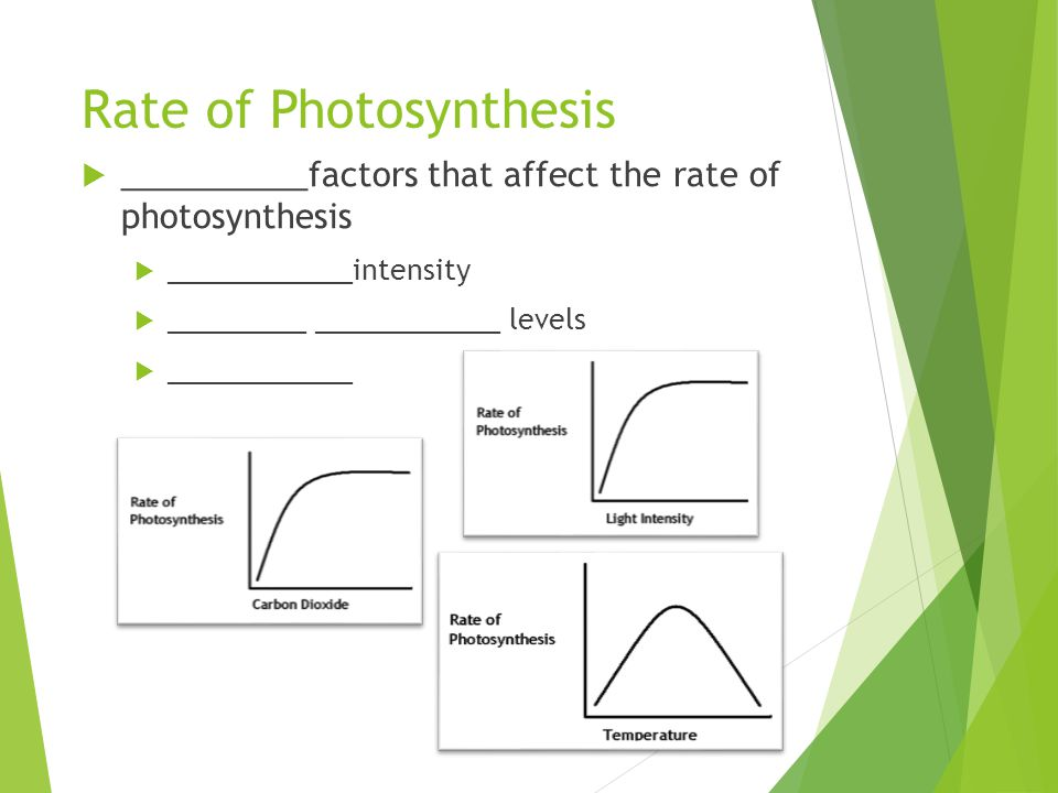 Rate of Photosynthesis  __________factors that affect the rate of photosynthesis  ____________intensity  _________ ____________ levels  __________