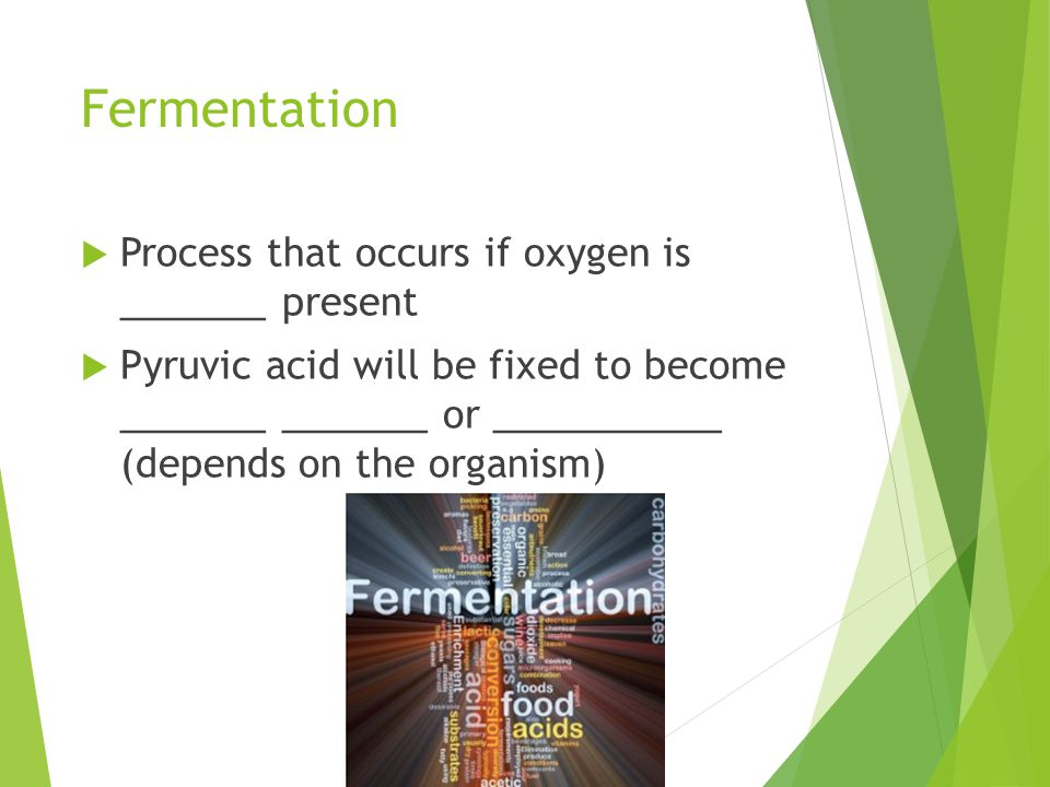 Fermentation  Process that occurs if oxygen is _______ present  Pyruvic acid will be fixed to become _______ _______ or ___________ (depends on the