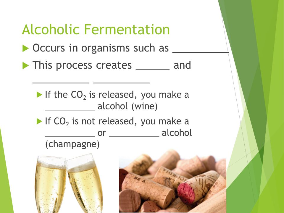 Alcoholic Fermentation  Occurs in organisms such as __________  This process creates ______ and __________ __________  If the CO 2 is released, you