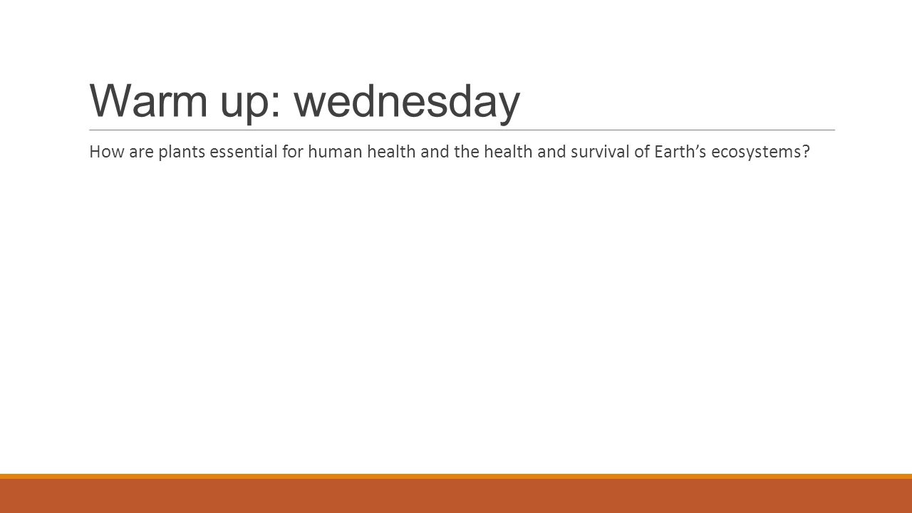Warm up: wednesday How are plants essential for human health and the health and survival of Earth's ecosystems?