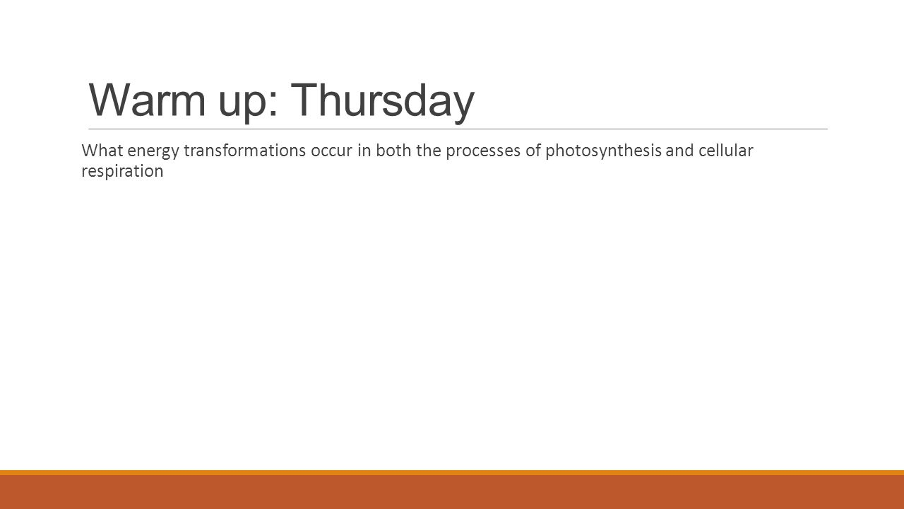 Warm up: Thursday What energy transformations occur in both the processes of photosynthesis and cellular respiration