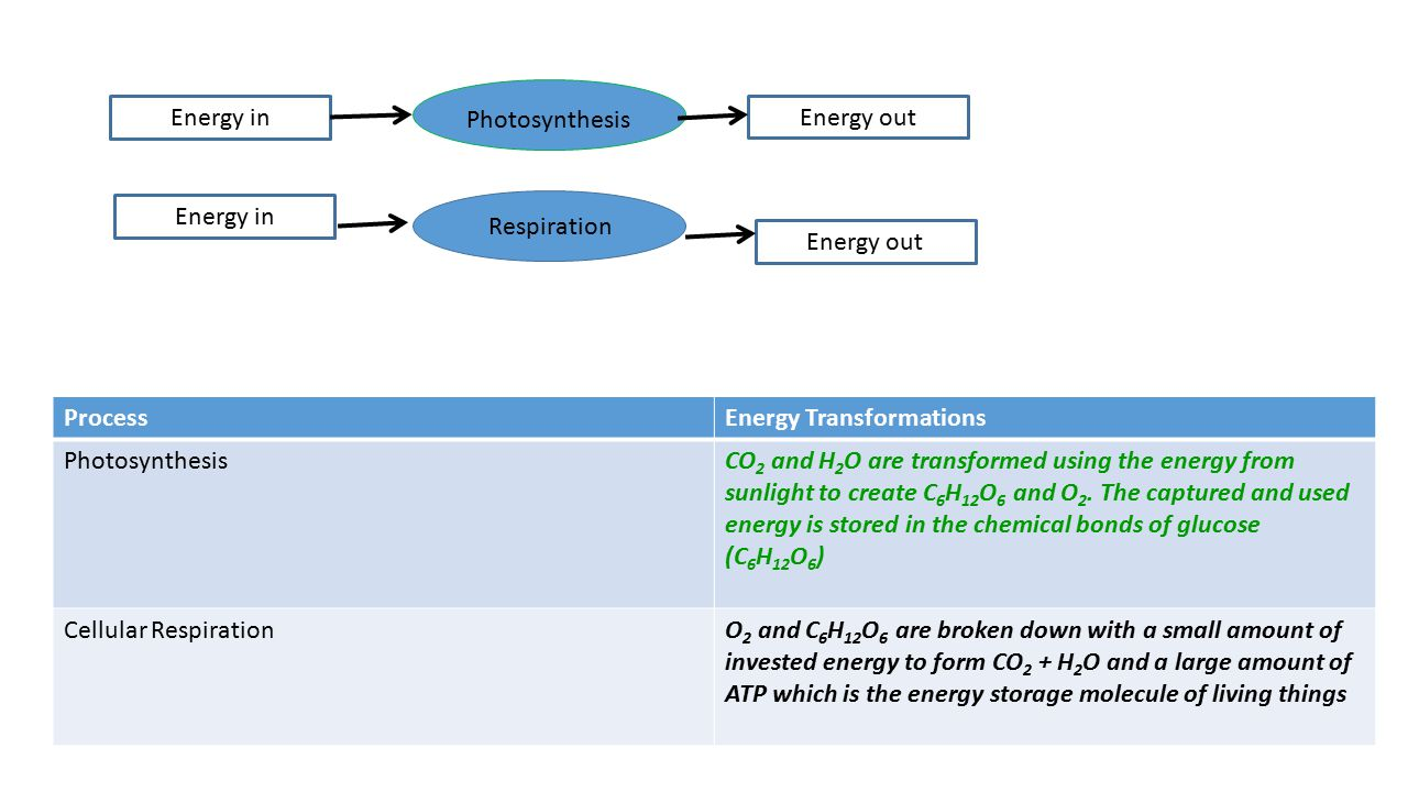 ProcessEnergy Transformations PhotosynthesisCO 2 and H 2 O are transformed using the energy from sunlight to create C 6 H 12 O 6 and O 2. The captured