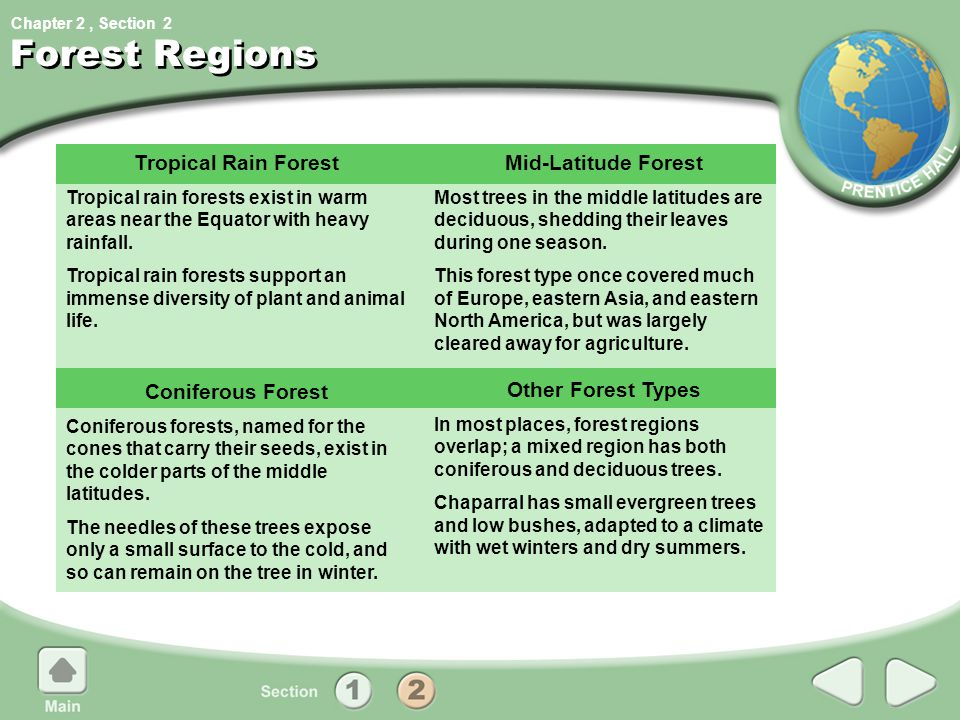 Chapter 2, Section Forest Regions Tropical Rain Forest Tropical rain forests exist in warm areas near the Equator with heavy rainfall. Tropical rain f