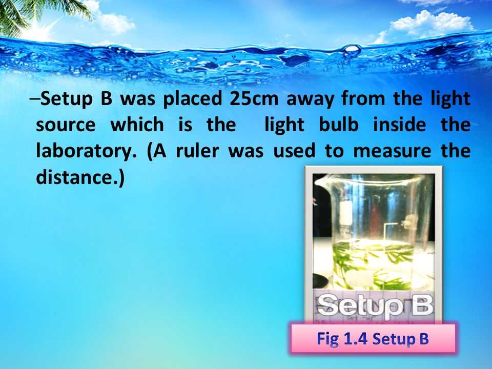 –Set-up A was placed 10cm away from the light bulb uplifted by a 1000mL beaker. (A ruler was used to measure the distance.)