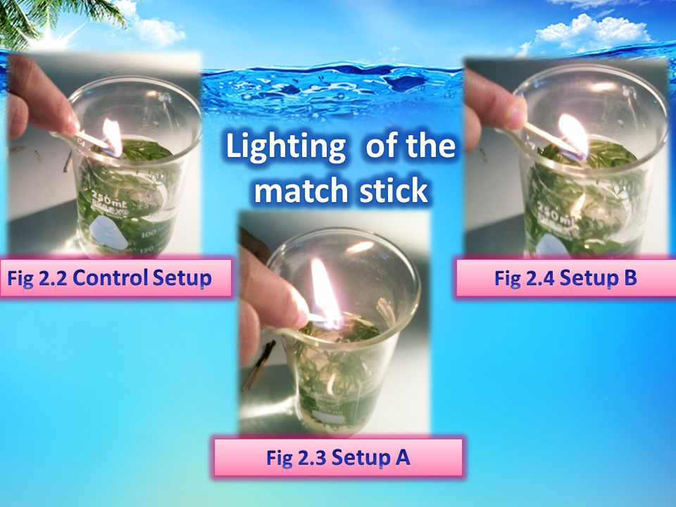 Due to the students' exemplary curiosity level, they lighted a match stick inside the beaker to identify which set-up has the most number of oxygen. T